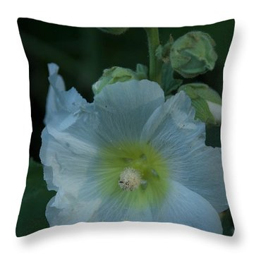 Dust Throw Pillow