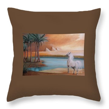 Dust Storm Throw Pillow by Corey Ford