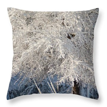 Dusted With Powdered Sugar Throw Pillow