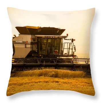 Dusty Harvest Throw Pillow