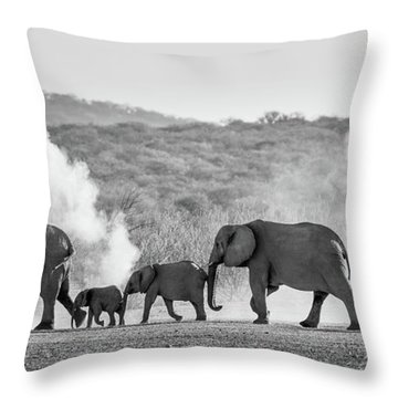 Dusty March Throw Pillow