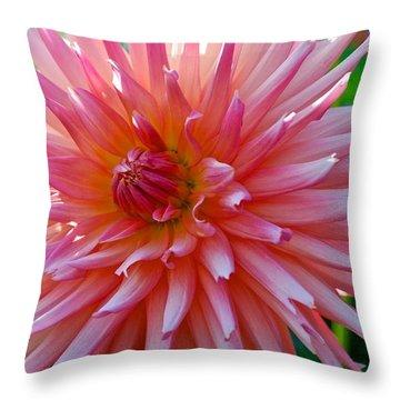 Dusty Rose Dahlia  Throw Pillow