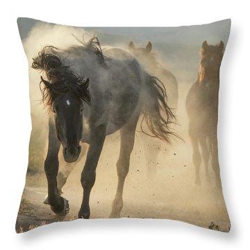 Dusty Sunrise Throw Pillow