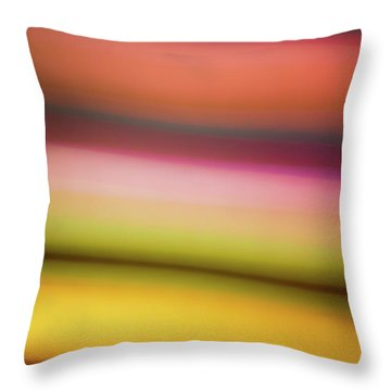 Dusty Sunset Throw Pillow