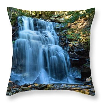 Dutchman Falls Lower Tier 1 Loyalsock State Forest Throw Pillow