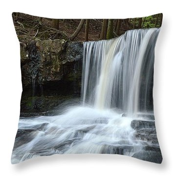 Dutchman Falls Upper Tier 1 Loyalsock State Forest Throw Pillow