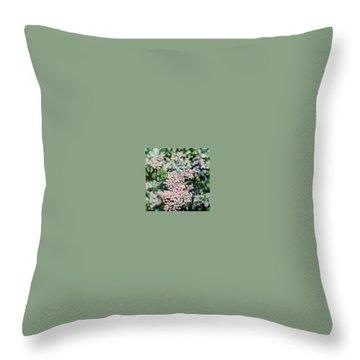 Dwarf Korean Lilac Throw Pillow by Karen Sloan