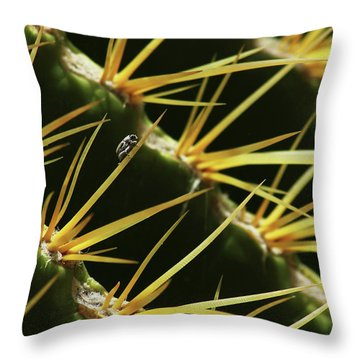 Dwarfed Throw Pillow