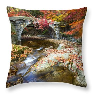 Dying Colours Throw Pillow