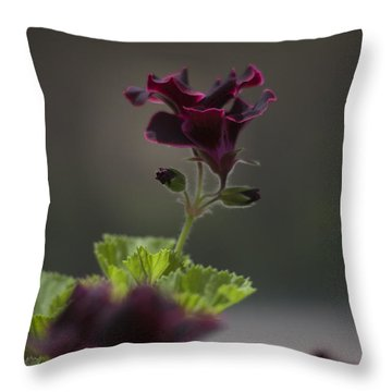 Dying Embers Throw Pillow