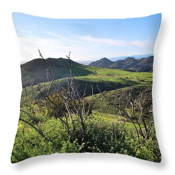 Throw Pillow featuring the photograph Dynamic California Landscape by Matt Harang