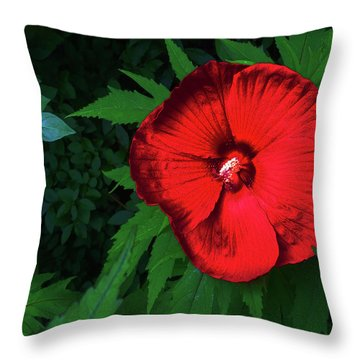 Dynamic Red Throw Pillow