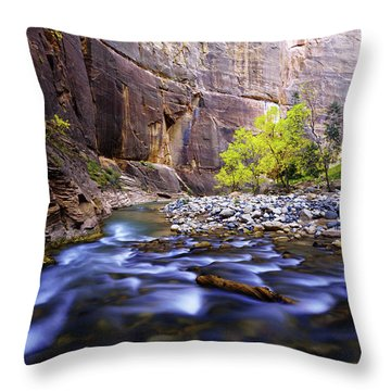 Dynamic Zion Throw Pillow