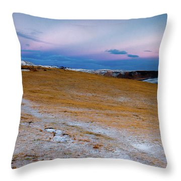 Throw Pillow featuring the photograph Dyrhloaey Cottage by Allen Biedrzycki