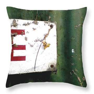 Throw Pillow featuring the photograph E by Rebecca Harman