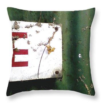 E Throw Pillow by Rebecca Harman