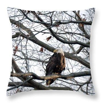 Eagel 0 Throw Pillow