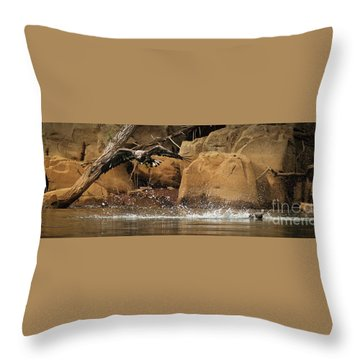Throw Pillow featuring the photograph Eagle Attack by Douglas Stucky