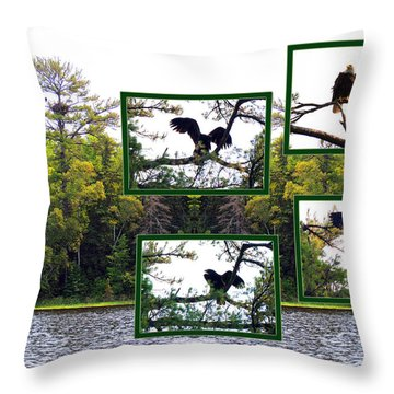 Eagle Collage Throw Pillow by Teresa Schomig