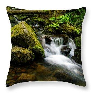 Eagle Creek Cascade Throw Pillow