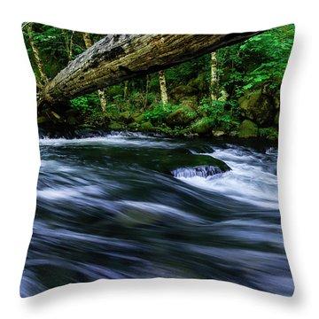Eagle Creek Rapids Throw Pillow
