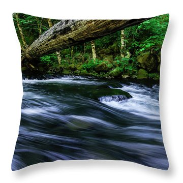 Eagle Creek Rapids Throw Pillow