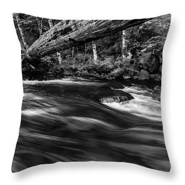 Eagle Creek  Throw Pillow