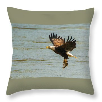 Eagle Departing With Prize Close-up Throw Pillow