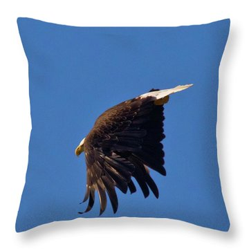 Throw Pillow featuring the photograph Eagle Dive by Linda Unger