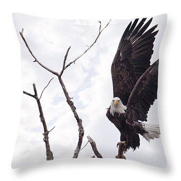 Eagle Throw Pillow by Everet Regal