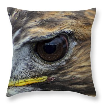 Eagle Eye Throw Pillow by Rainer Kersten