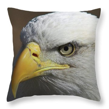 Throw Pillow featuring the photograph Eagle Eye by Steve Stuller