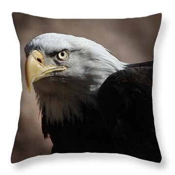 Eagle Eyed Throw Pillow by Marie Leslie