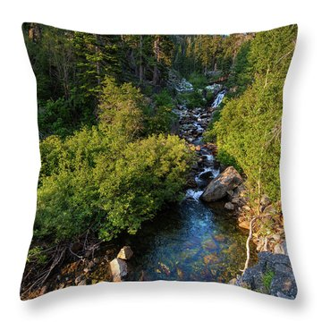Eagle Falls - 1 Throw Pillow