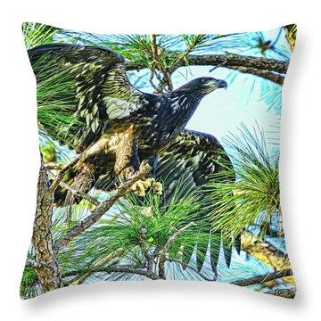 Throw Pillow featuring the photograph Eagle Fledgling 2017 by Deborah Benoit