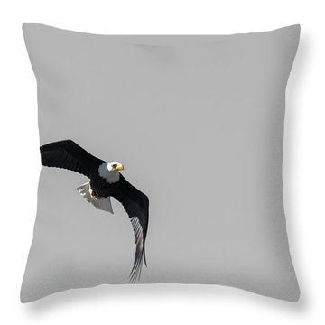 Bald Eagle Flight Throw Pillow
