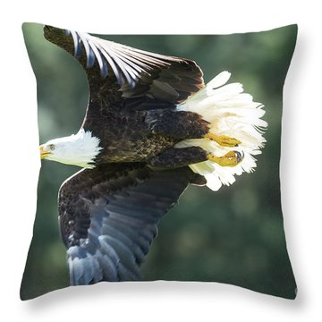 Eagle Flying 3005 Throw Pillow