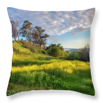 Eagle Grove At Lake Casitas In Ventura County, California Throw Pillow
