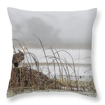 Eagle Hunts For Coots And Ducks Throw Pillow