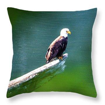 Eagle In Lake Throw Pillow