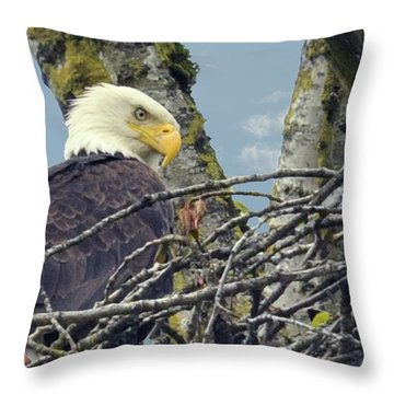 Throw Pillow featuring the photograph Eagle In Nest by Rod Wiens