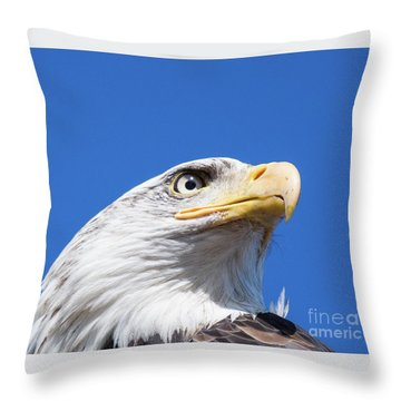 Throw Pillow featuring the photograph Eagle by Jim  Hatch