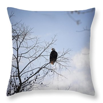 Eagle Keeping Watch Throw Pillow