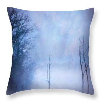 Eagle Lake 1 Throw Pillow