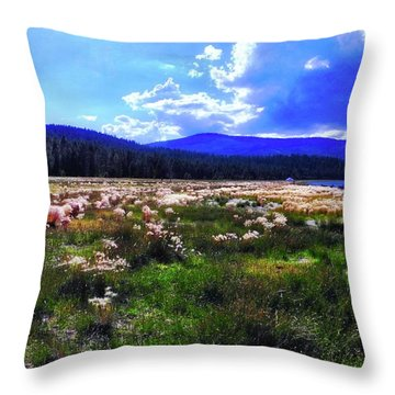 Eagle Lake Afternoon Throw Pillow