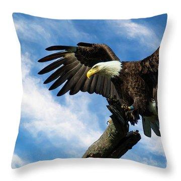 Eagle Landing On A Branch Throw Pillow