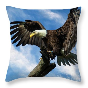 Eagle Landing On A Branch Throw Pillow