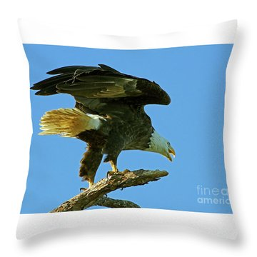 Eagle Mom, The Scolding Throw Pillow