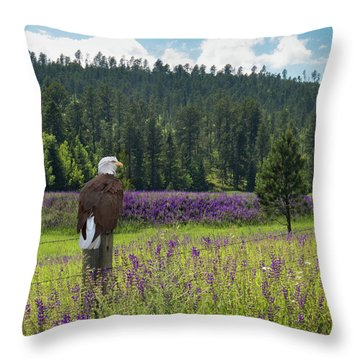 Throw Pillow featuring the photograph Eagle On Fence Post by Patti Deters