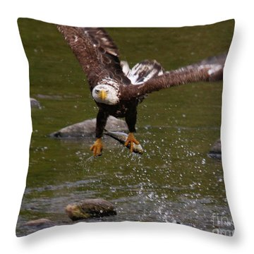 Throw Pillow featuring the photograph Eagle Over Seal Rock by Debbie Stahre